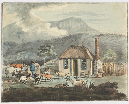 building the backbone of australia with free settlers and convicts In the 1830s, port phillip was growing at a startling rate, and female convicts and free settlers were sent to victoria in response to the resulting labour shortage.